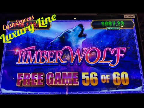 ★BIG BIG WIN WIN ! SO MANY FREE SPINS !!★CASH EXPRESS LUXURY LINE / TIMBER WOLF Slot☆$3.75 Bet☆栗スロ