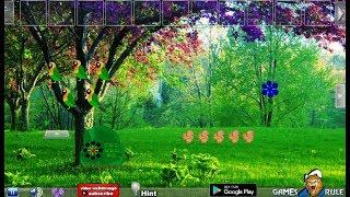 G2R Find the Kurinji Flower Tree Walkthrough [Games2Rule]