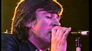 The Sports : Modern Don Juan (live 1978)