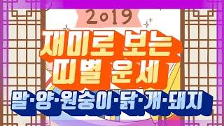 기해년 설날…재미로 보는 띠별 한 해 운세②(말·양·원숭이·닭·개·돼지)