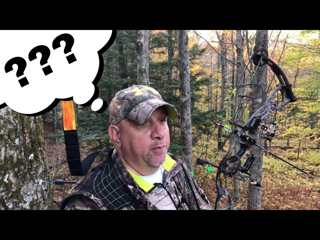 Deer Hunting In The October Lull: Myth Or Reality?