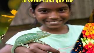 FESTA DA NATUREZA de Gereba e Patativa do Assaré com Gereba - arranjo de cordas João Omar clipe