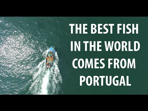 The best fish in the world comes from Portugal - Extended Version