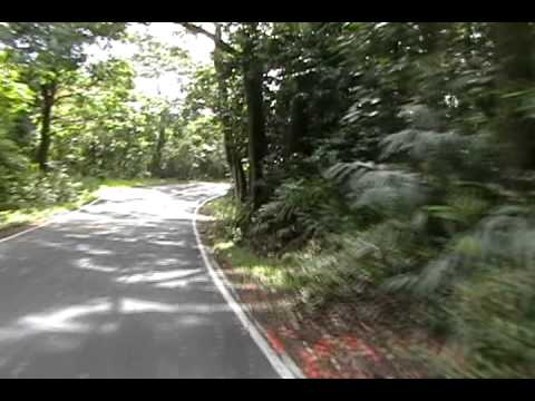 Hana Highway - MM29