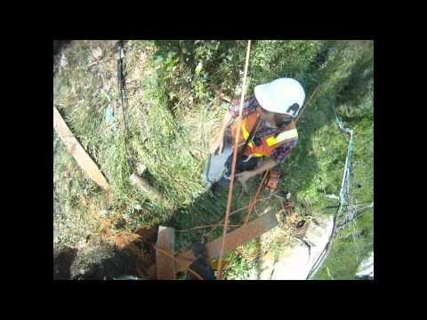 Sherbrooke Tree Service Highlights 2011