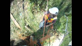 Sherbrooke Tree Service Highlights 2011