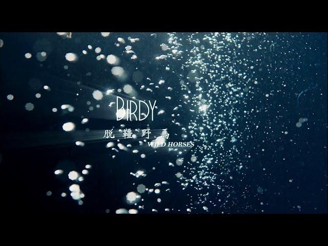 Birdy - Wild Horses脫韁野馬 (華納official HD 高畫質官方中字版)
