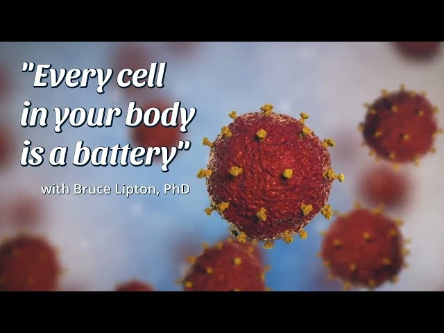 Every cell in your body is a battery, with Bruce Lipton, PhD