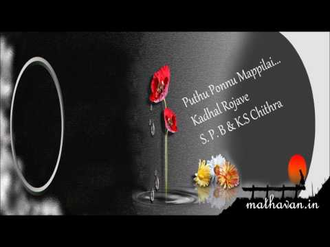Pudhu Ponnu     Kadhal Rojave      S P Balasubrahmanyam ,Chithra