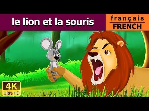Le Lion et la Souris | Histoire Pour S'endormir | Histoire Pour Les Petit | Contes De Fées Français