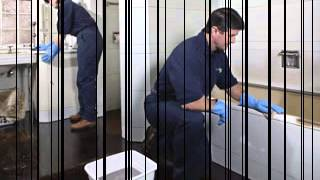 Hire Bond Cleaners Gold Coast