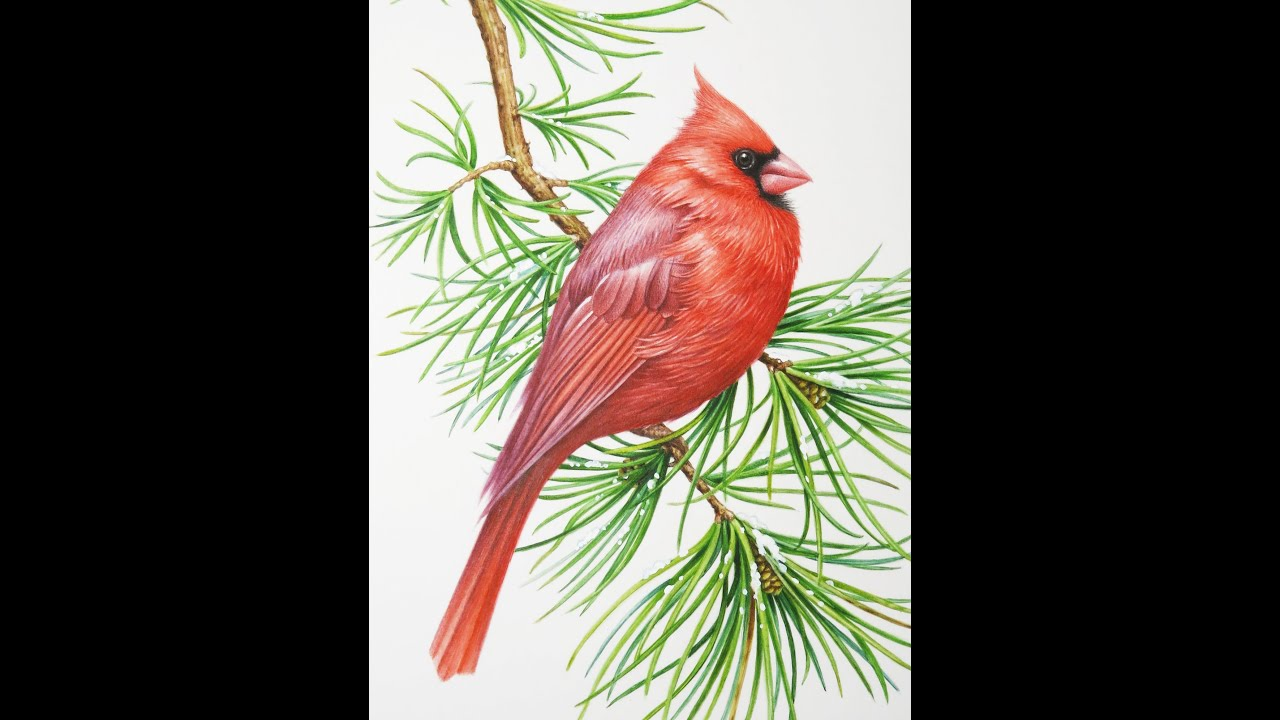 how to make red watercolour