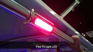 Download Taco Marine LED Lights Demonstrated at the Miami International Boat Show Mp3 and Videos
