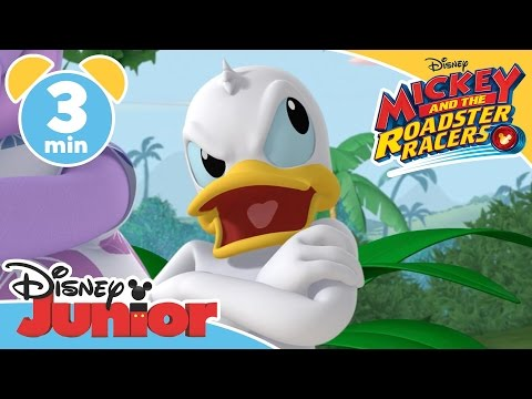 Mickey and the Roadster Racers | It's Wiki Wiki Time | Disney Junior UK