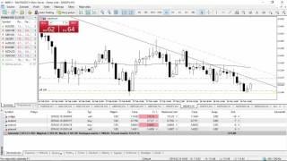 Forex School - strategie, obchodní pozice