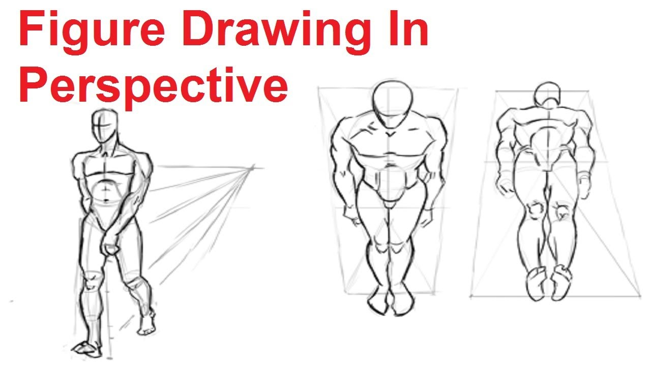 Figure Drawing Lesson 4/8 - How To Draw The Human Figure In Perspective - YouTube