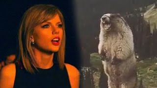 Marmot sings Taylor Swift: I Knew You Were Trouble