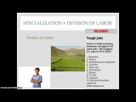 Specialization + Division of Labor