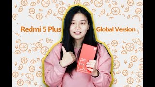 Real Global Version Redmi 5 Plus/Глобальная версия Redmi 5 Plus
