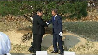 Kim Jong Un and Moon Jae-in Plant Tree