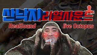 English sub 산낙지 리얼사운드!! 목포뻘낙지live octopus Eating show Mukbang ASMR