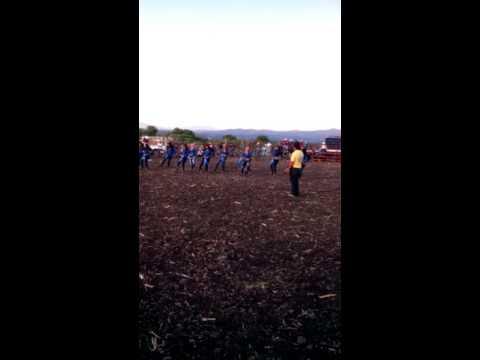 jaripeo enapseo el alto guanajuato toros de luis garciaиз YouTube · Длительность: 6 мин48 с