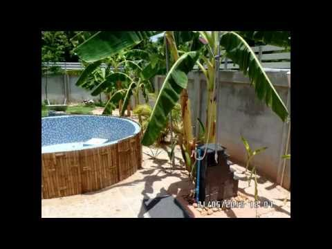 My Home made Plunge Pool