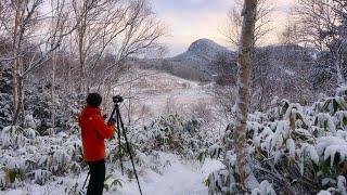 【風景写真】初冬の志賀高原で雪の芸術を撮影|NikonZ7・Z6II