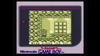 Wario Land: Super Mario Land 3 - Gameplay (Super Game Boy)