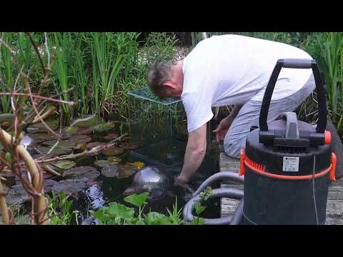 C mo hacer una pecera en el jard n youtube for Peceras en jardines