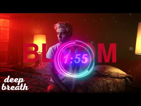 Troye Sivan - Bloom (Rhythm Remix)