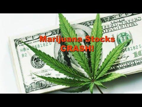 Marijuana Stocks CRASH On Today's News Regarding Proposed Law Enforcement Regulation!