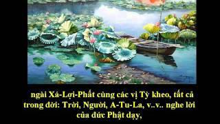 Tụng Kinh Phật A Di Đà (Nghĩa) - Thích Trí Thoát tụng