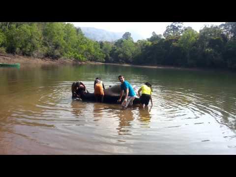Kerala Blog Express: Yeh Mammal Maange More!