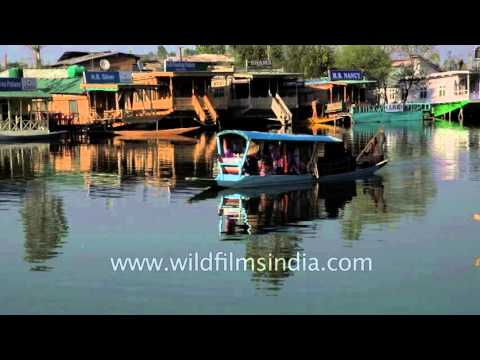 Dal Lake, an icon of the Kashmir tourism industry