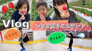 ★Vlog★いちご狩りとあちゃぴが行きたかったアイススケートへ