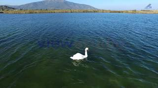 Mostos Lake Greece