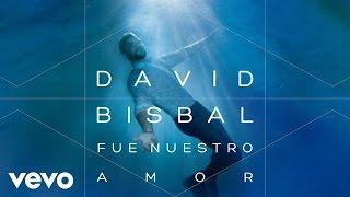 David Bisbal - Fue Nuestro Amor (Audio)