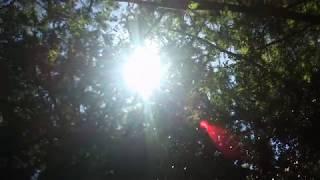 Солнце и звуки Курамы