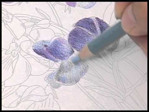 Nuri-e How to color by colored Pencils no.2/5 大人の塗り絵の塗り方