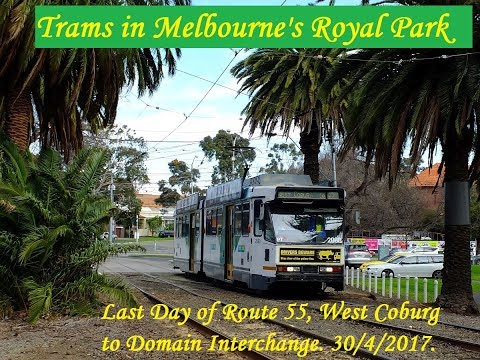 Trams, Trains, and Buses in Royal Park, Melbourne. 30/4/2017 (B2 Bonanza!)