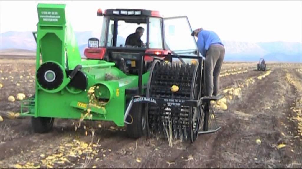 toplamali otomatik kabak hasat makinasi