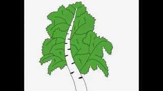 Birch tree How to draw a easy? Как нарисовать просто? Береза