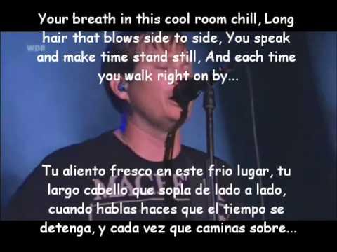 Blink 182-Violence Lyrics y Subtitulos LIVE 2010