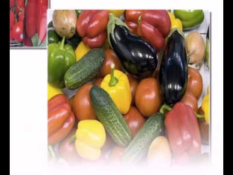 семена овощей оптом от производителя