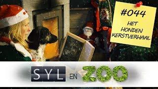 Het Honden Kerstverhaal - Syl en ZOO - VLOG #044
