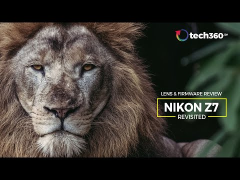 Revisiting the Nikon Z7 : Lens & Firmware 2.0 Review (14-30 f4  24-70 f2.8  500 f5.6)