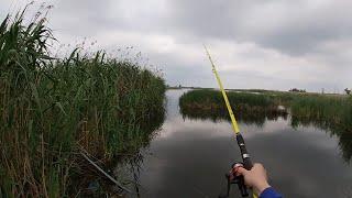 Рыбалка на поплавок летом 2020