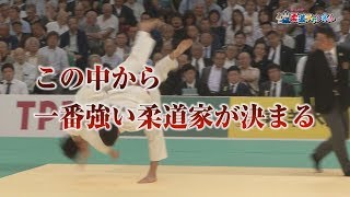 【大会の見どころ】平成31年全日本柔道選手権大会【柔道チャンネル】