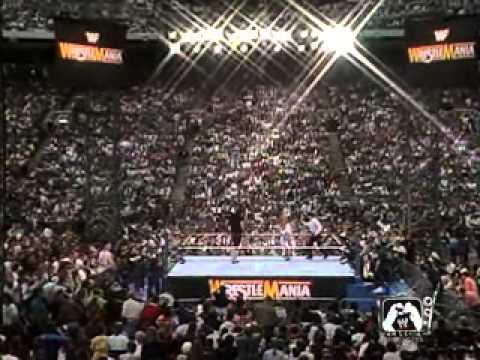Wrestlemania 8 Undertaker Vs Jake Roberts Youtube